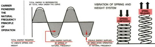Natural Frequency Principle